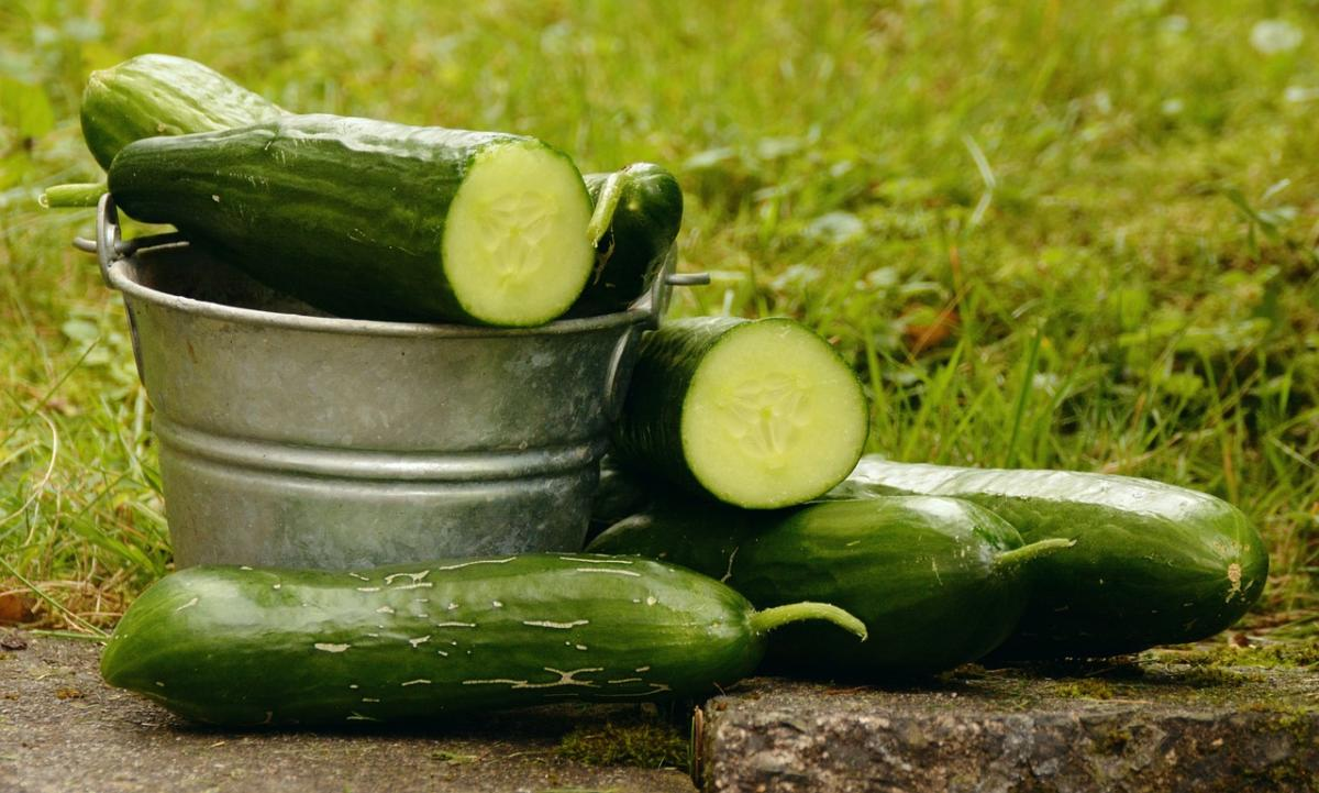 Que signifie «komkommertijd», expression typiquement estivale?